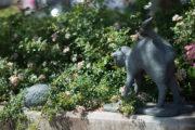 Werner Quade: Zwei Igel und eine Katze