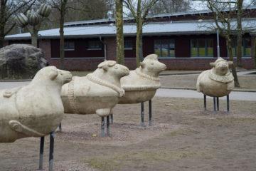 Claudia Sperlich: Vier Schafe, (Foto: KUNST@SH/Jan Petersen, 2018)
