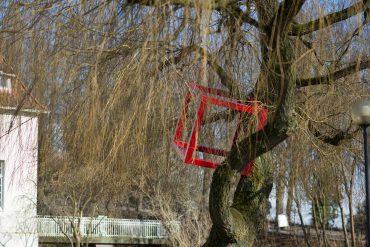 HD Schrader: Cube+Tree, (Foto: KUNST@SH/Jan Petersen, 2018)