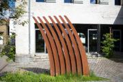Cees Pronk: Gras im Wind