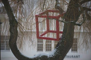 HD Schrader: Cube+Tree, (Foto: KUNST@SH/Jan Petersen)