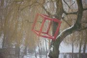HD Schrader: Cube+Tree