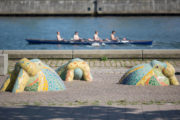 Susanne Siegl: Walross auf Landgang