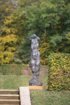 Wieland Förster: Daphne I